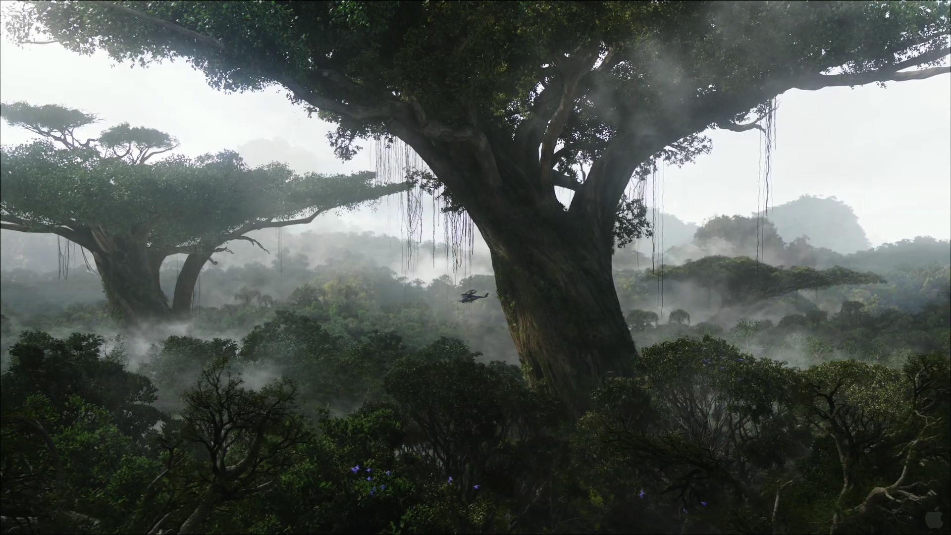 Res: 1920x1080, Rainforest-on-pandora-desktop-wallpaper-wallpaper-avatar-movie-high-res- rainforest-pandora-desktop-Pandora-Forest.jpg