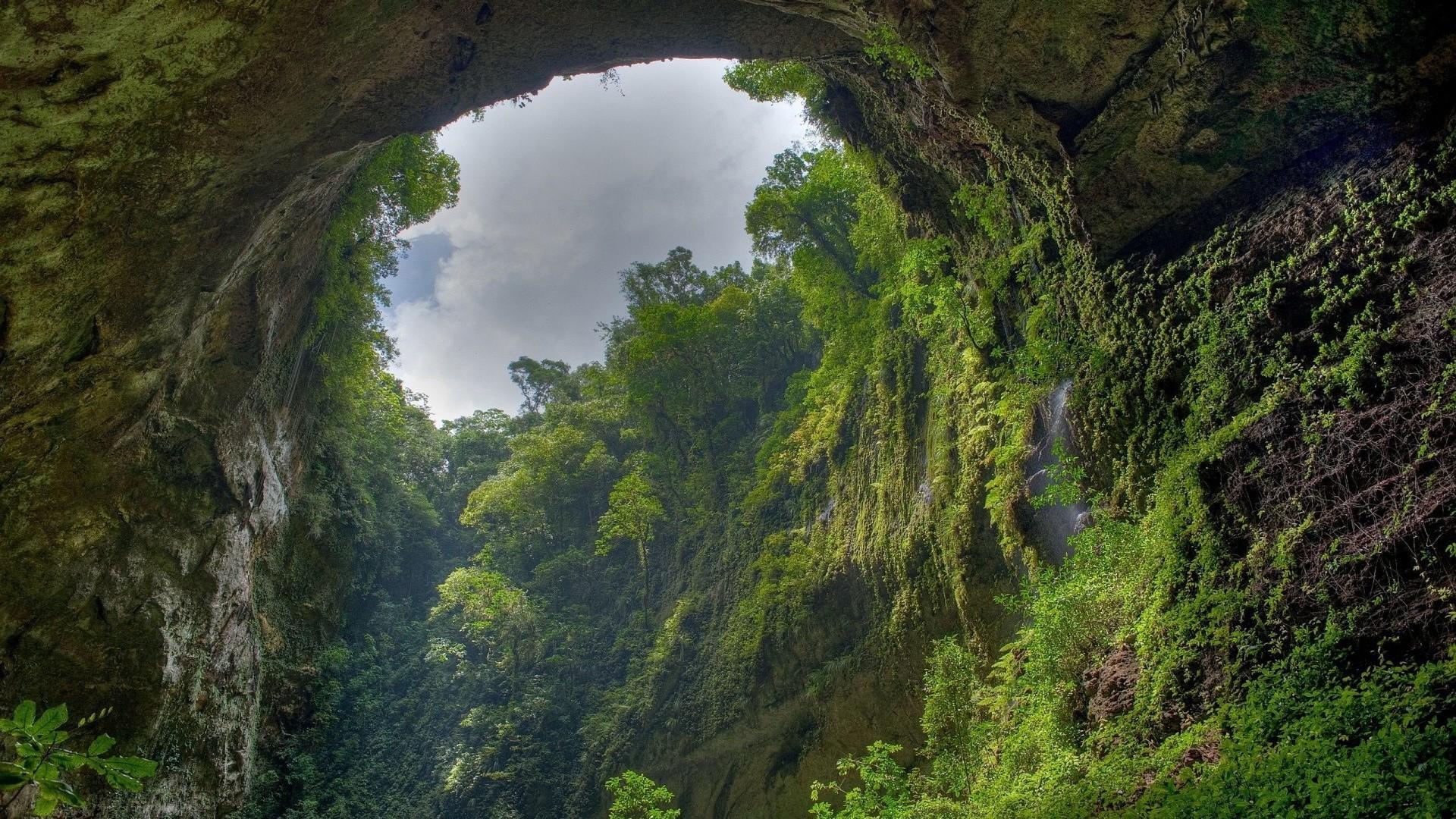 Res: 1920x1080, Amazon Rainforest ...