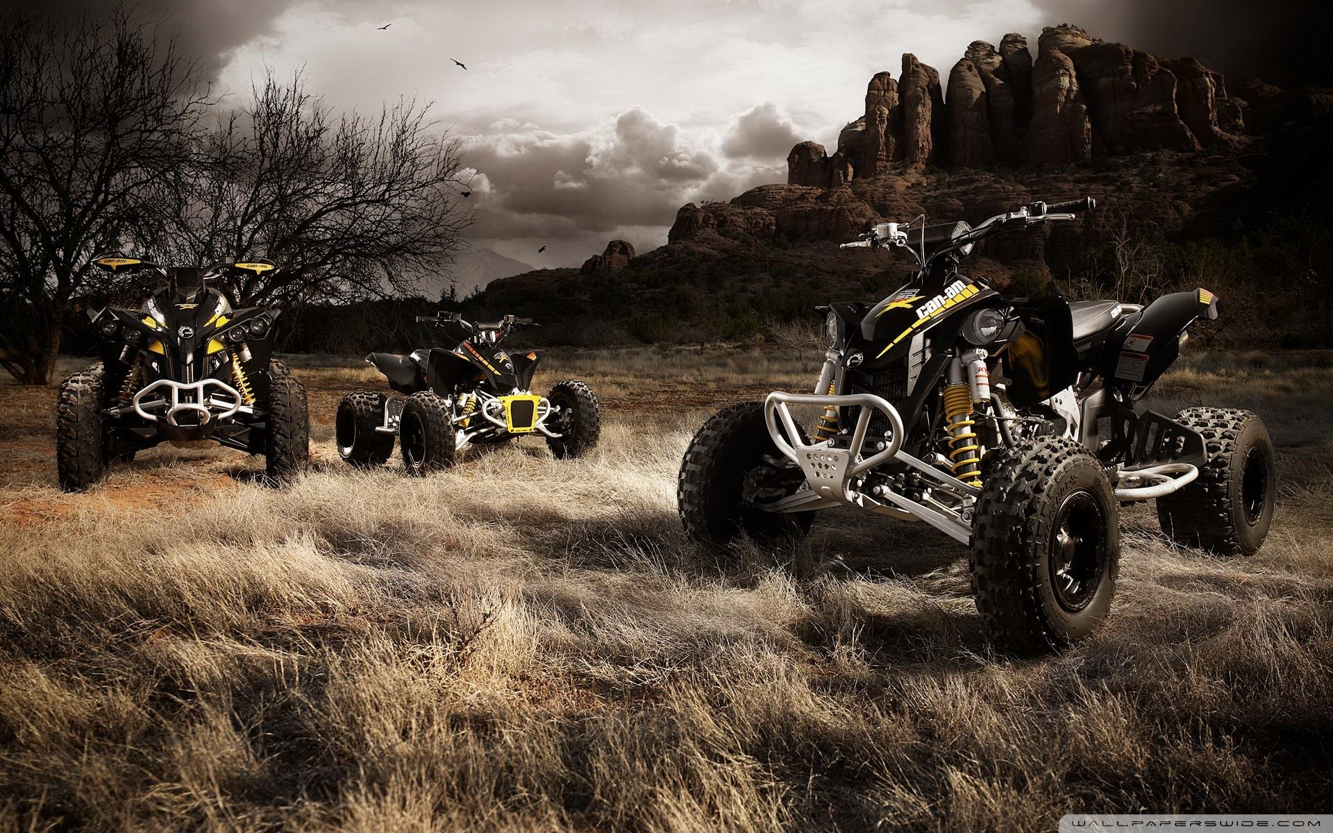 Res: 1920x1200, ... Big Atv PC Background Images, G.sFDcY Wallpapers ...