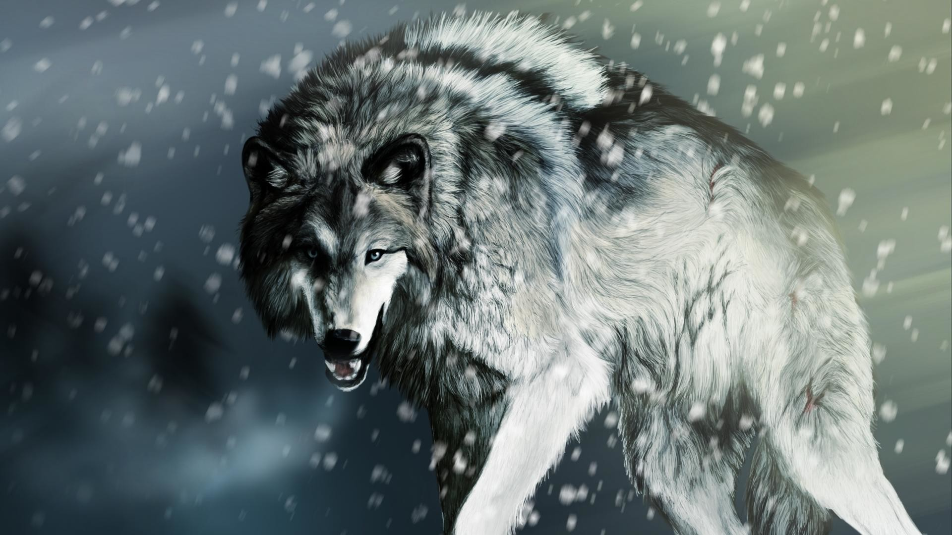 Res: 1920x1080,  Wallpapers For > Cool Wolf Wallpaper Hd