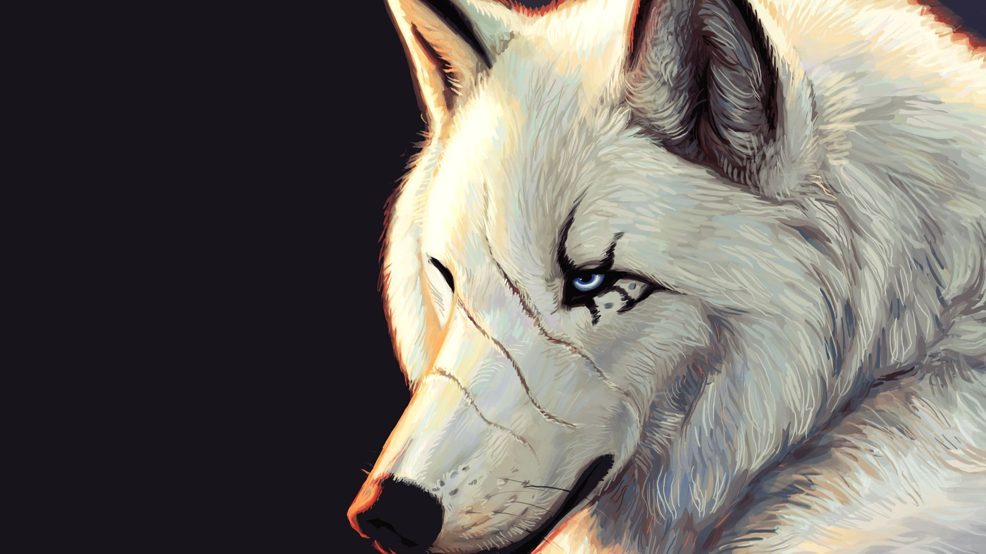Res: 1920x1080, anime wolf pics dowload
