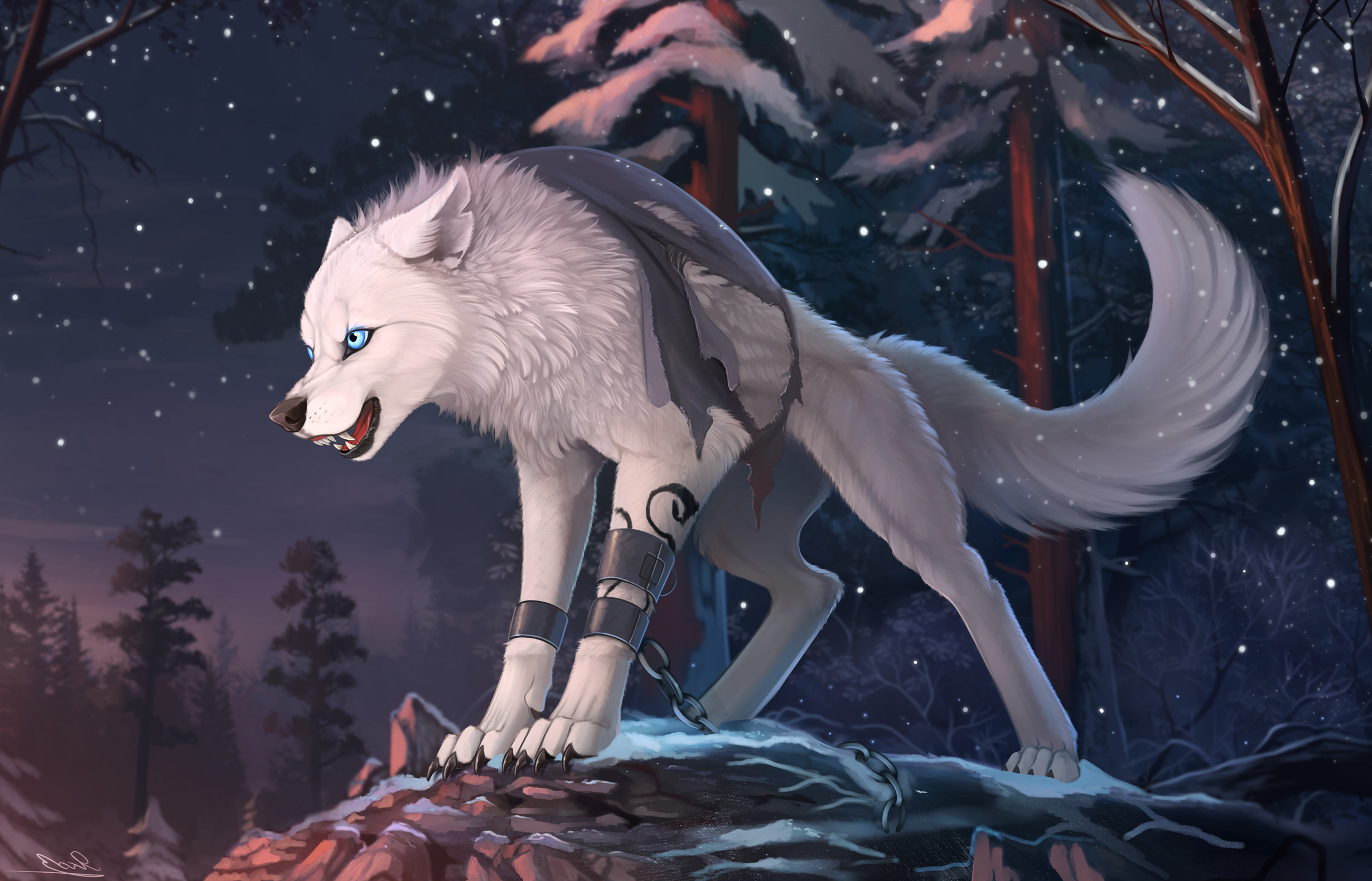 Res: 2460x1580, Wolf Furry Wallpaper, (-4.25 Mb)