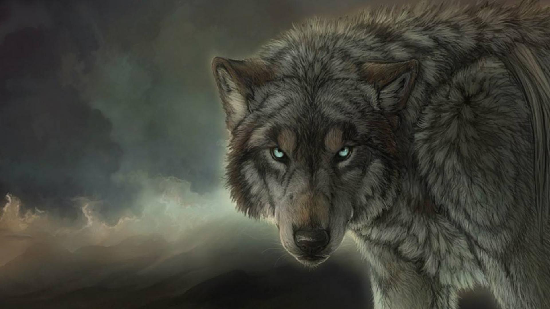 Res: 1920x1080, Desktop Wolf Wallpaper HD.
