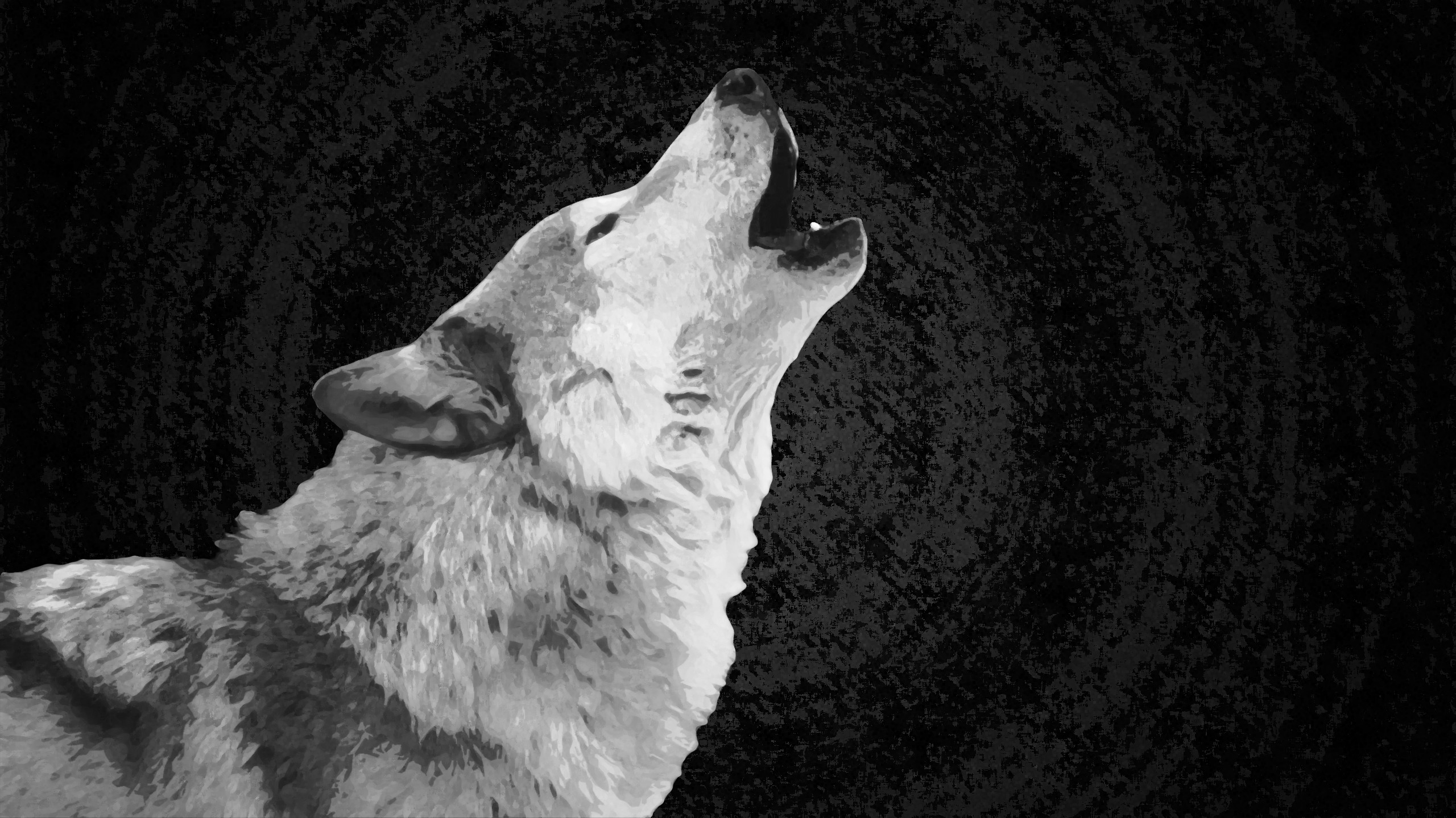 Res: 2560x1440, Best Photo: White Wolf Wallpapers,  px