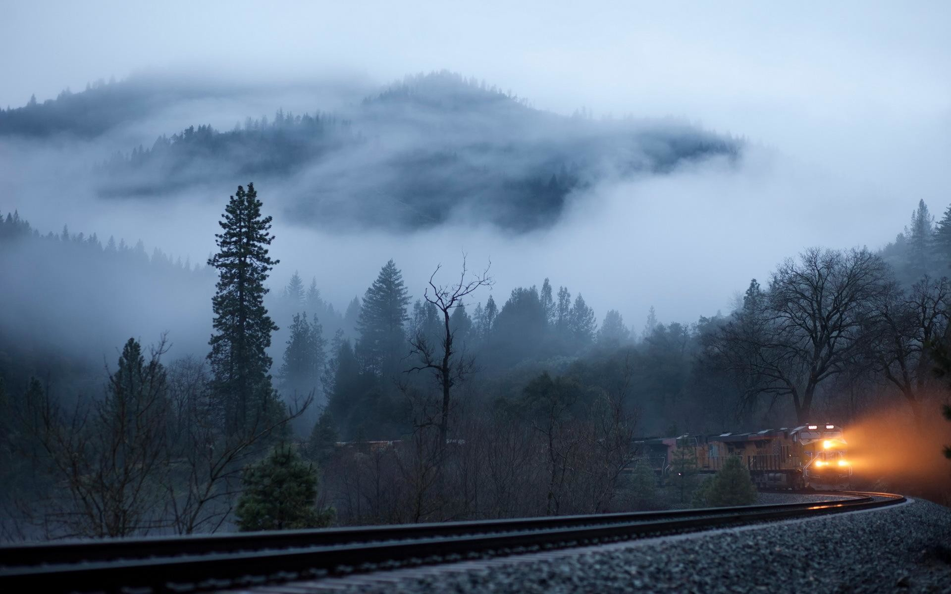 Res: 1920x1200, Train coming from the foggy forest