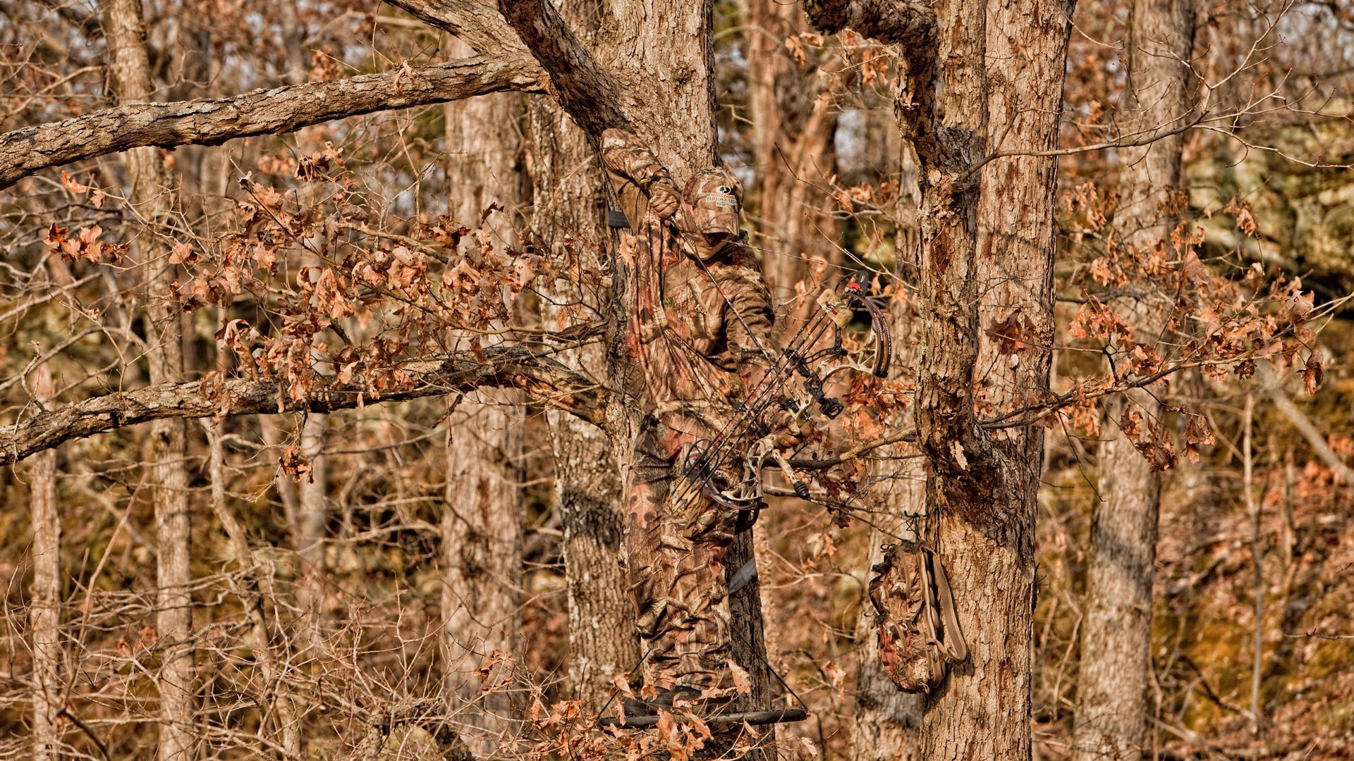 Res: 1920x1080, free duck dynasty wallpaper download ...