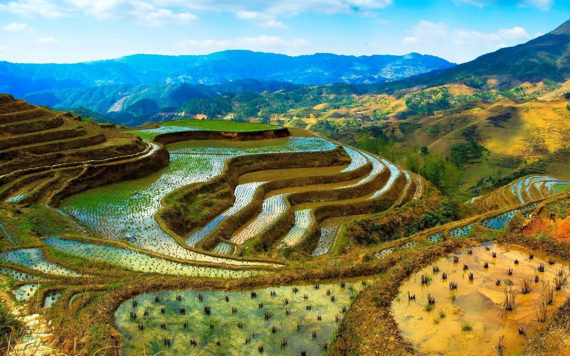 Res: 1920x1200, Download Rice Fields Wallpaper 227007 · Chinese LandscapeLandscape ...
