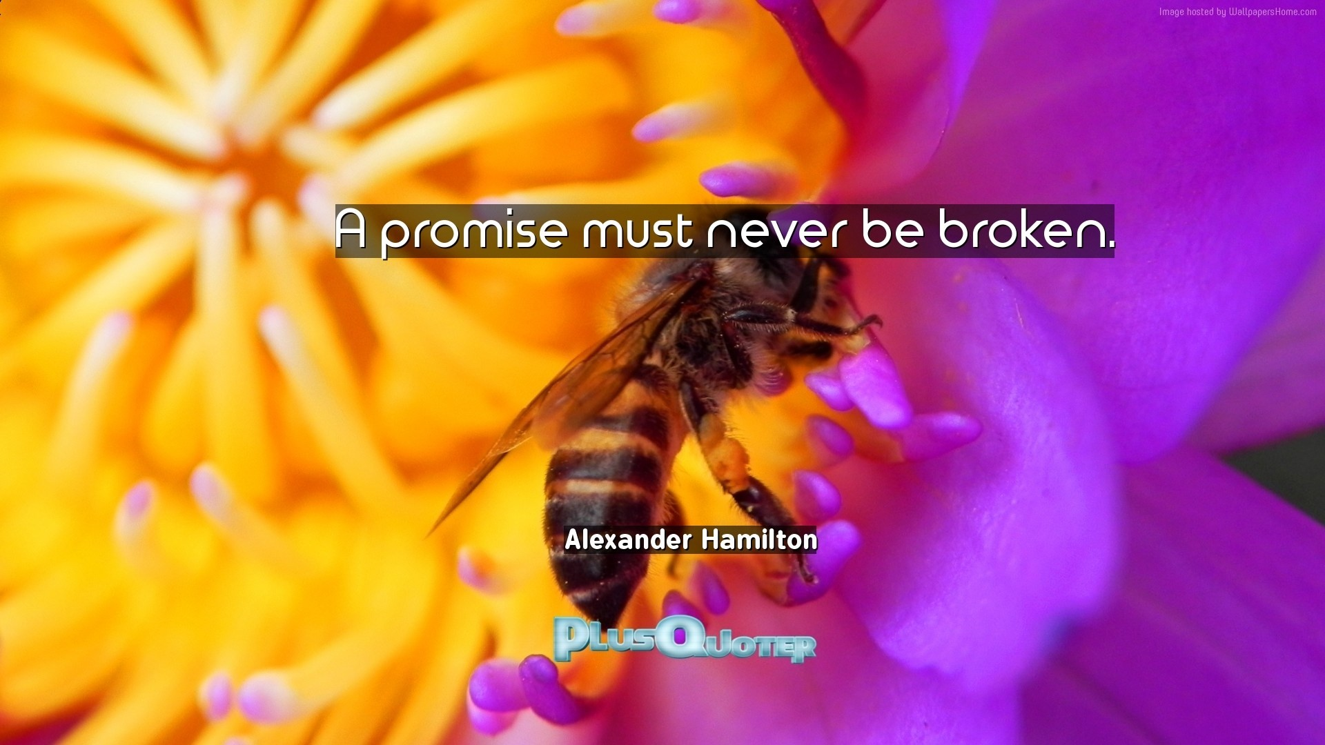 "Res: 1920x1080, Download Wallpaper with inspirational Quotes- ""A promise must never be  broken.""-"