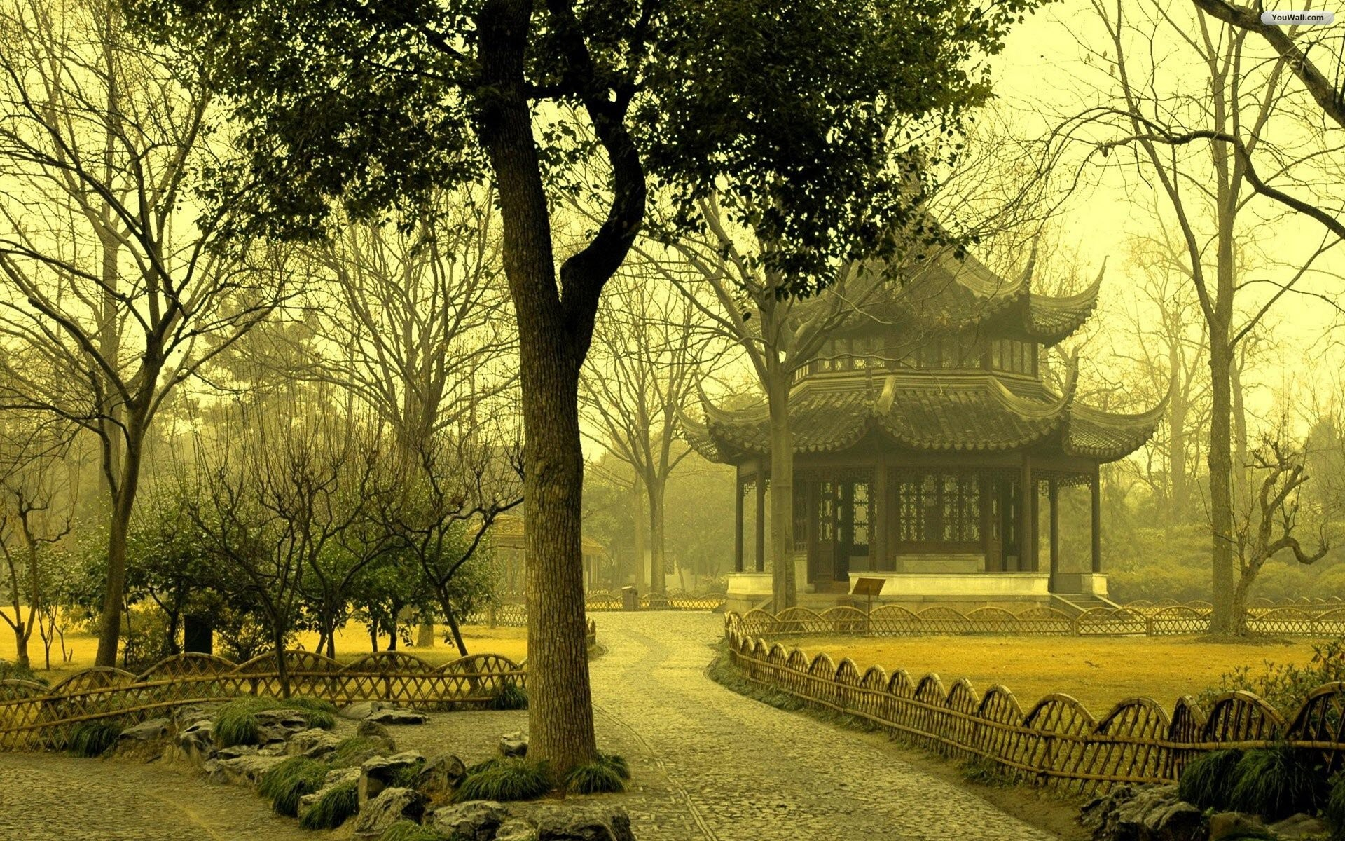 Res: 1920x1200, ... High HD Quality Pretty Asian Background Wallpapers by Marcos Muldoon  1163104 ...