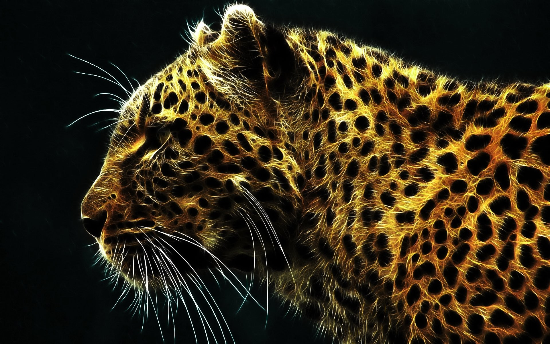 Res: 1920x1200, HD Wallpaper | Background Image ID:66550.  Animal Leopard