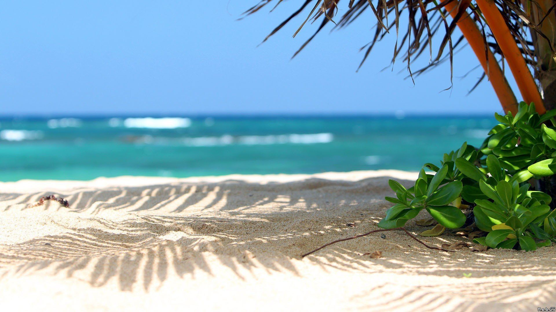 Res: 1920x1080, Beach Scene Wallpaper Desktop Background beach Wallpaper
