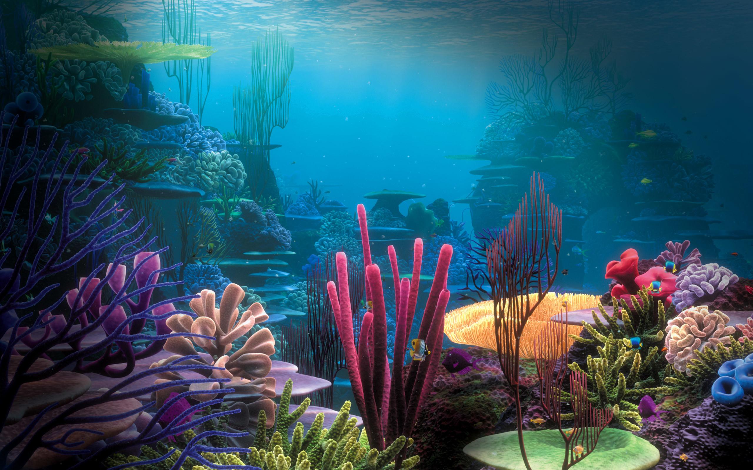 Res: 2560x1600, Title : Ocean pics underwater hd wallpaper