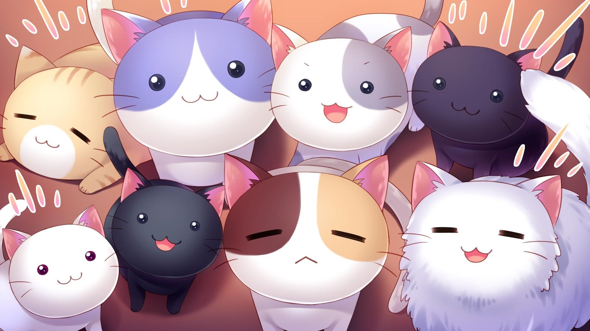 Res: 2048x1152, Anime  cat Nyan Cafe Macchiato visual novel