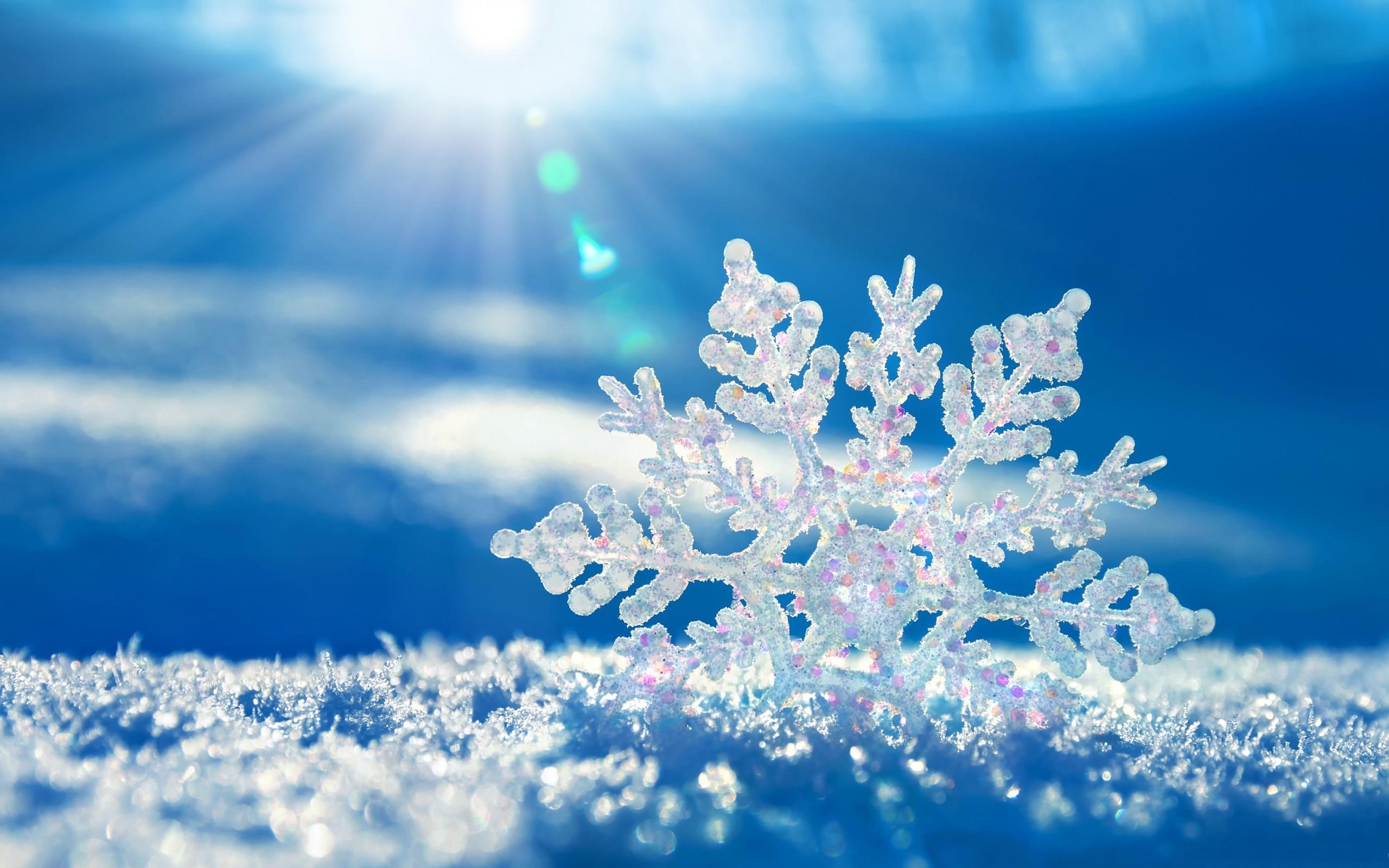 Res: 2560x1600, Snowflake Fresh Cool White Blue Good Nice Amazing Desktop Wallpapers