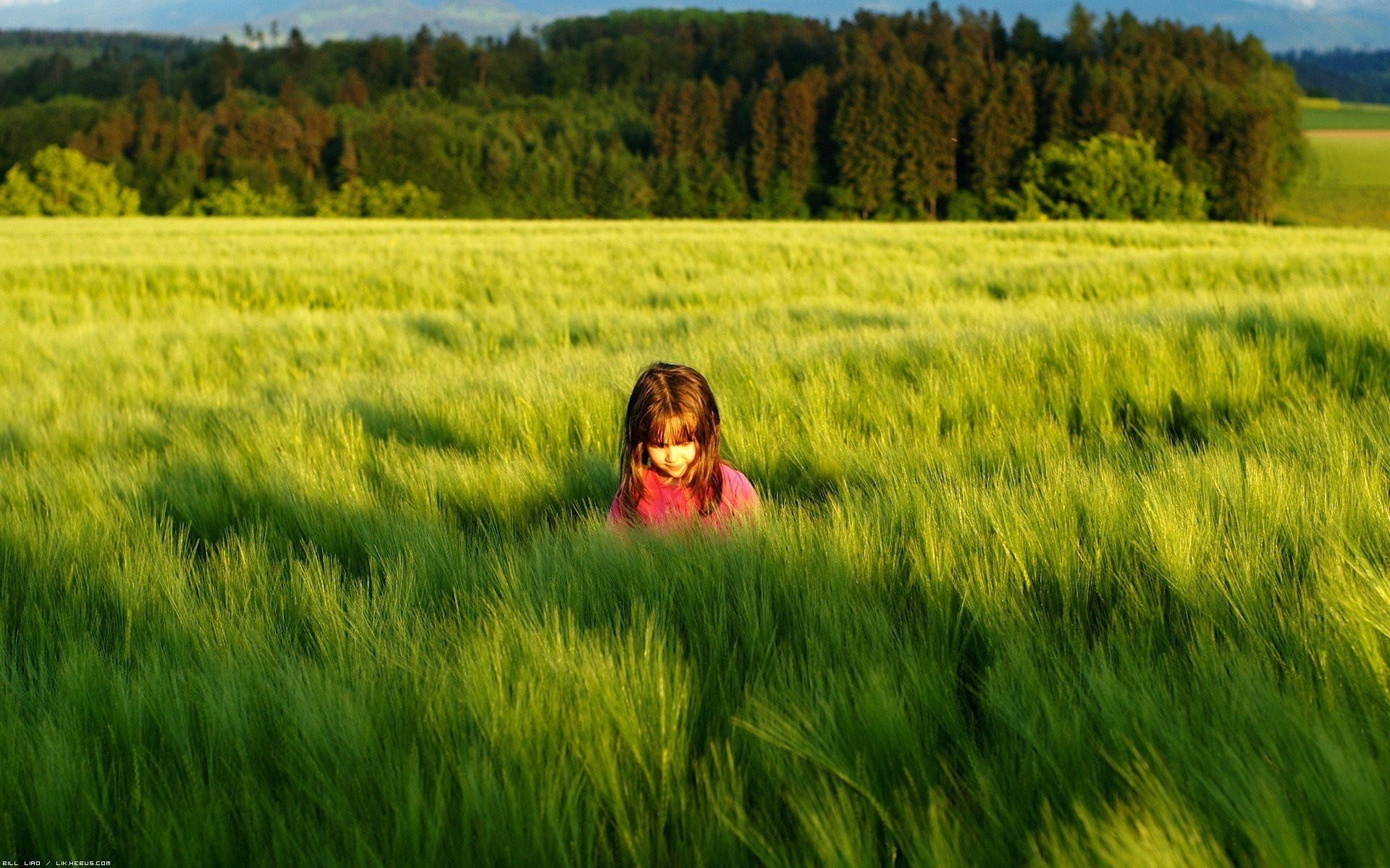 Res: 1920x1200, mood children girl. nature grass green meadow sun trees . foliage shadow background  wallpapers full