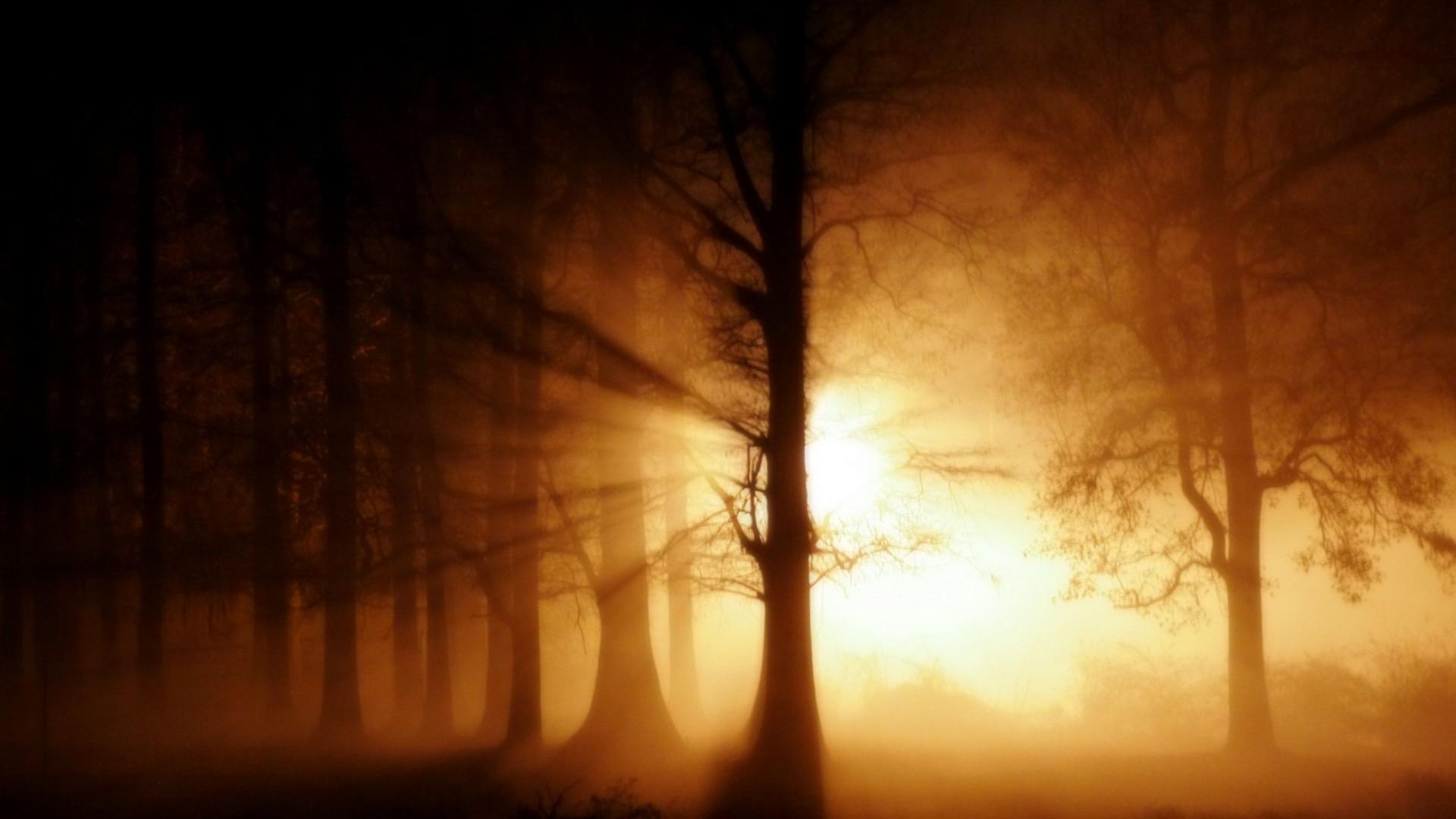 Res: 1920x1080, Mystical Ghost Fog.