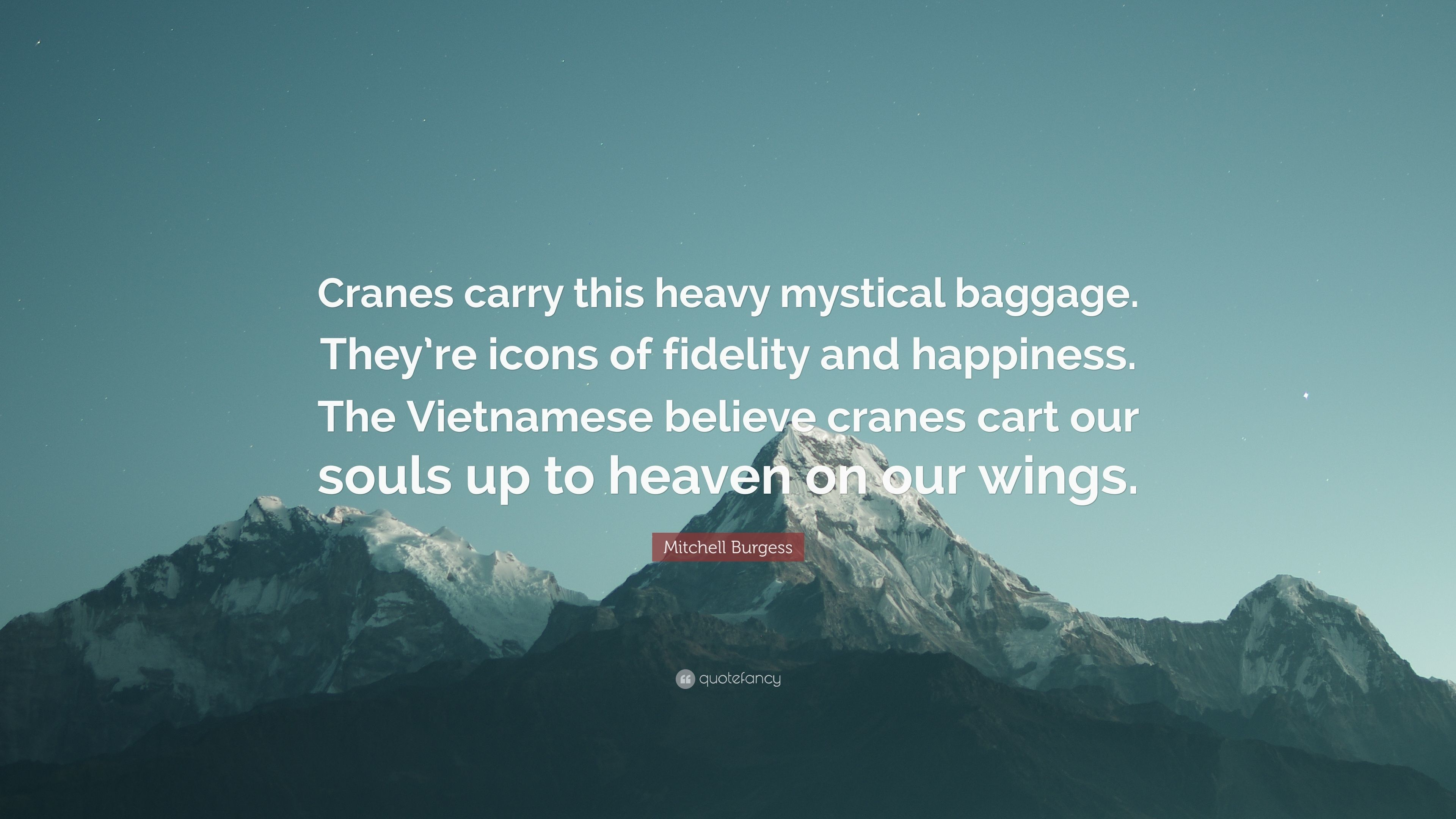 """Res: 3840x2160, Mitchell Burgess Quote: """"Cranes carry this heavy mystical baggage. They're  icons"""