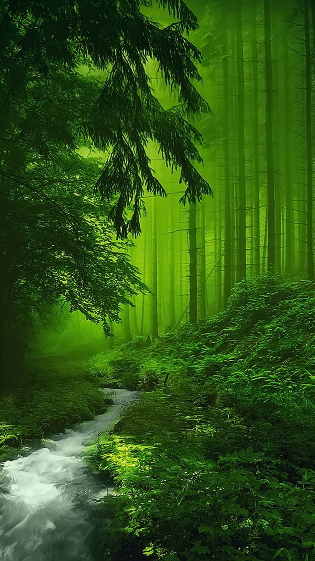 Res: 1080x1920, Mystical Forest More
