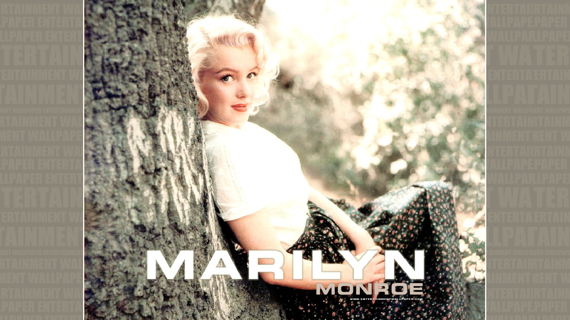 Res: 1920x1080, Marilyn Monroe Wallpaper - Original size, download now.