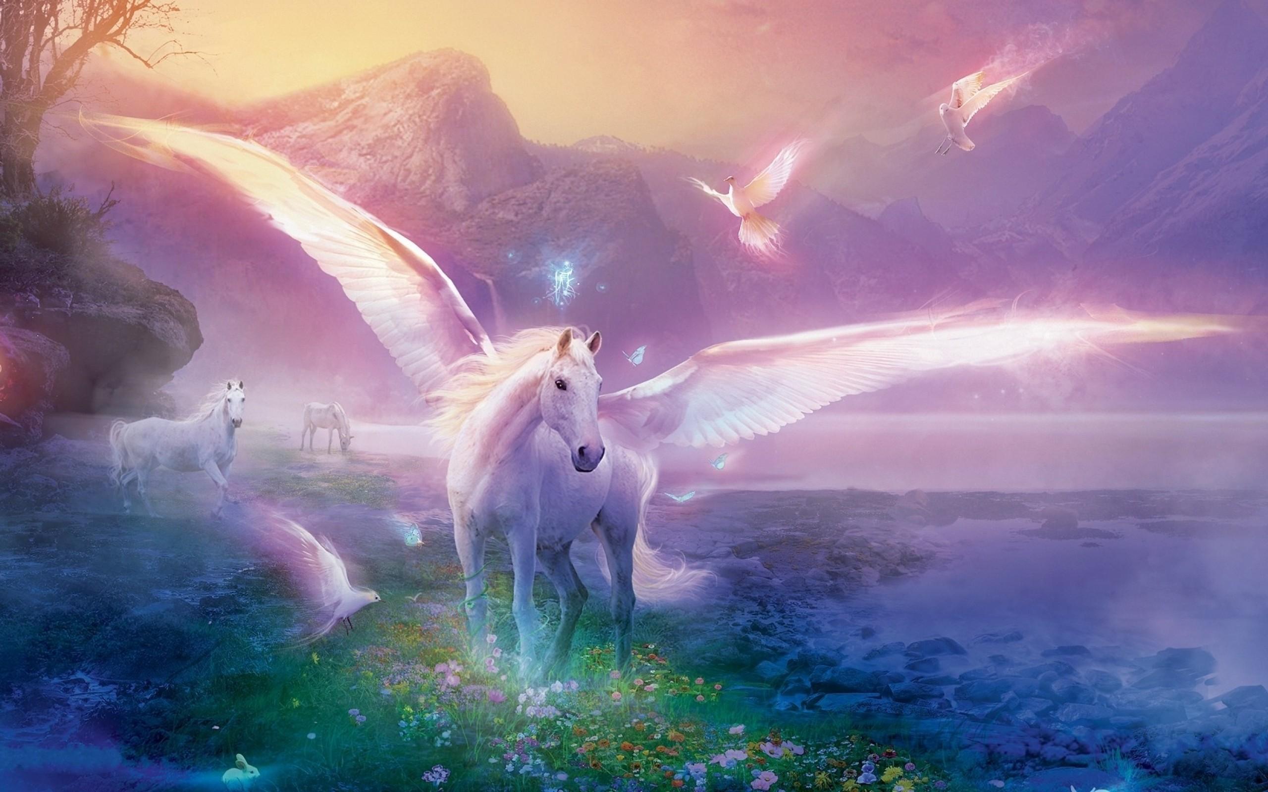 Res: 2560x1600, Unicorns wallpaper |  | #78087