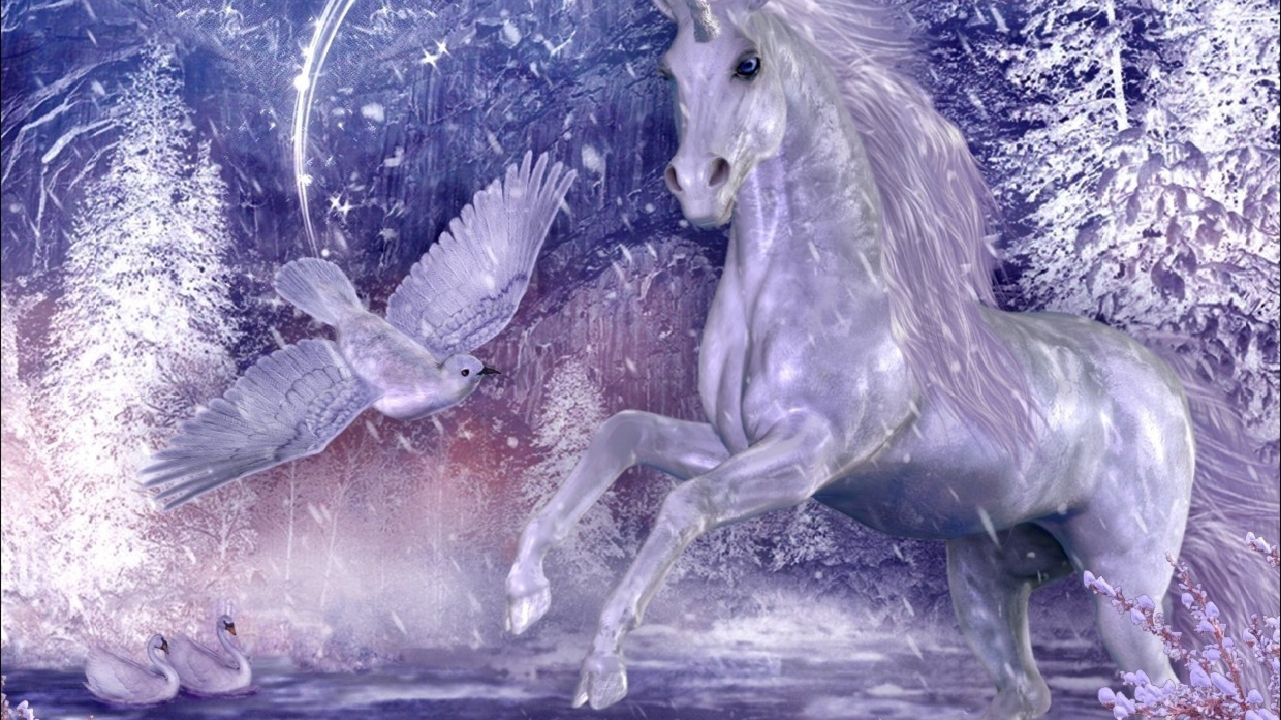 Res: 2560x1440, HD Unicorn Wallpaper and Desktop Background Back Wallpapers