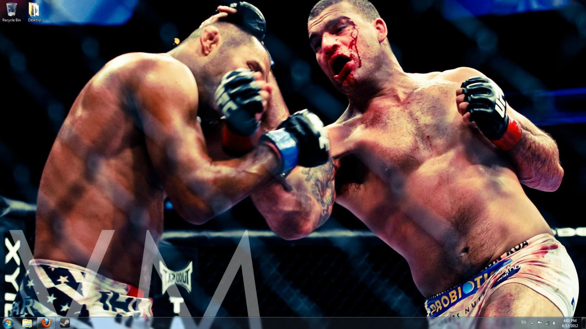 Res: 1920x1080, I only have three MMA wallpapers because I can never find good HD photos.